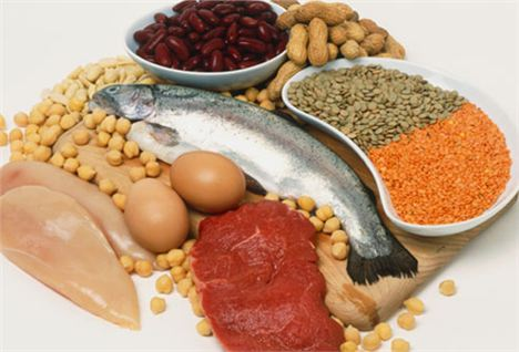 Include Lean Meat, Fish, Eggs, Pulses, Nuts And Seeds